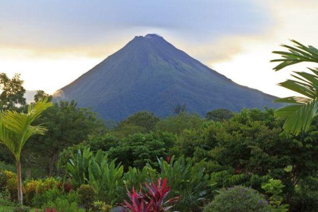 Circuit Costa Rica, Jungles et forêts