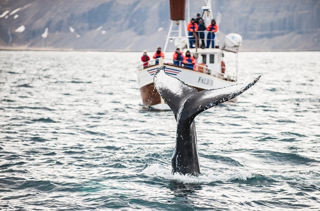 Islande - Circuit Splendeurs de l'Islande en Eté