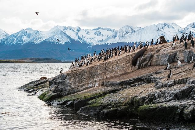 Argentine - Chili - Circuit Merveilles d'Argentine, Chili et Croisière au Cap Horn