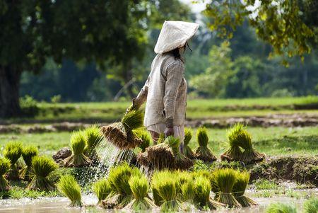 Splendeurs du Laos extension Cambodge - Angkor 13J/10N - 2018 - voyage  - sejour