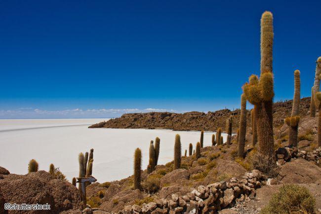 Circuit combiné Pérou-Bolivie, immersion andine 3*