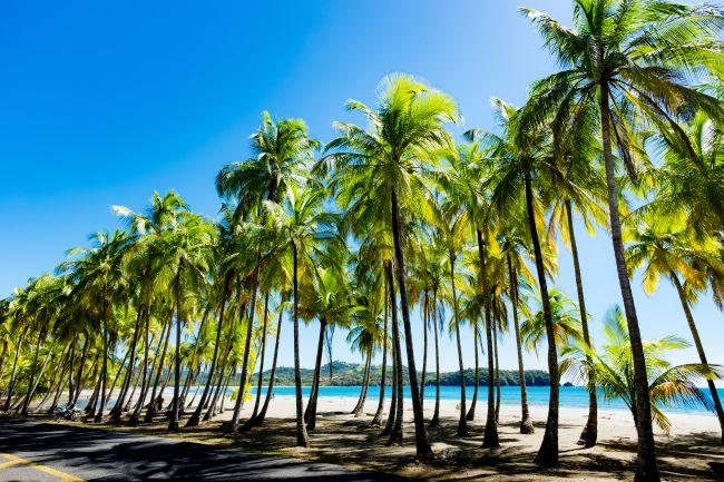 agences de rencontres costaricainesSingapour Expat Dating scène