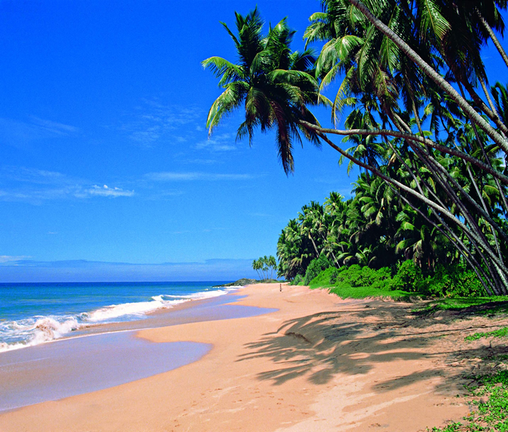 Circuit Sri Lanka | Une perle dans l'Océan