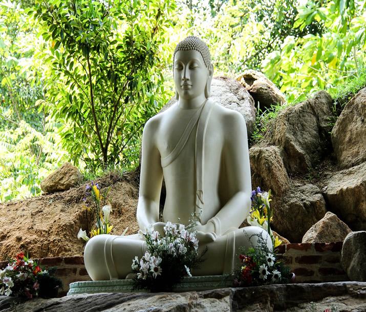 Circuit Sri Lanka   Civilisations et temples anciens