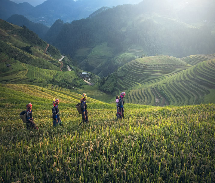 Combiné Laos Cambodge | Condensé du Cambodge et du Laos