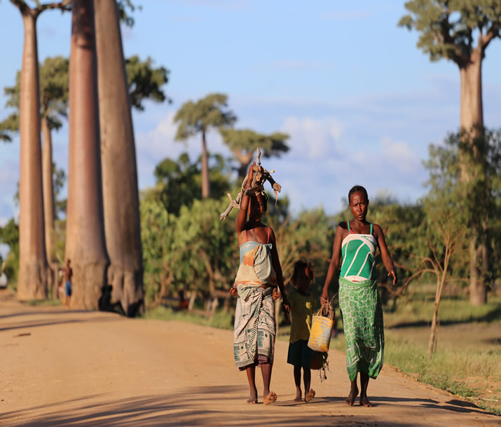 Circuit Madagascar | Première découverte de Madagascar