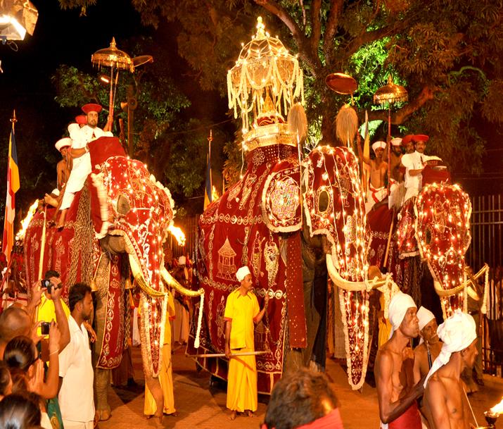 Circuit Sri Lanka | Lumières du Sri Lanka