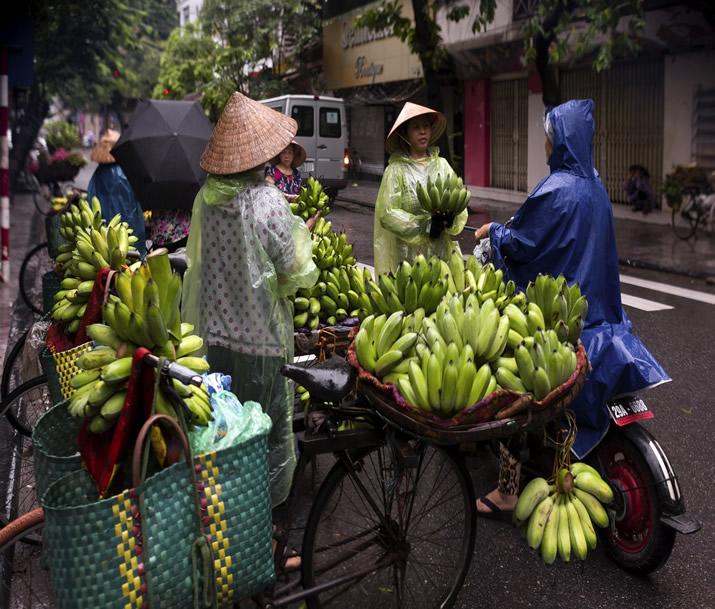 Circuit Vietnam   Les indispensables du Vietnam