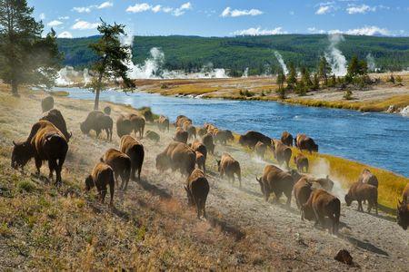 Séjour Ouest américain - Merveilles du Grand Ouest & des Rocheuses 19J/17N - 2020