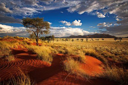 Namibie - Zimbabwe - Circuit Splendeurs de Namibie et extension Chutes Victoria