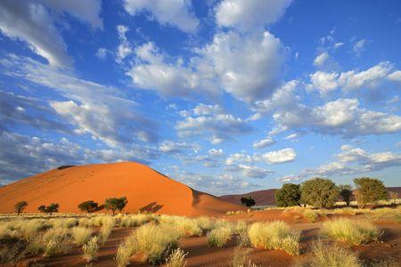 Splendeurs de Namibie & extension Fish River Canyon & Chutes Victoria 17J/14N - 2021