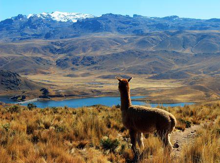 Explorations du Pérou 14J/12N - 2021 - 1