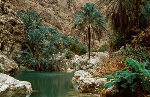 Emirats Arabes Unis - Dubaï - Oman - Circuit Splendeurs d'Oman 3/4* avec extension Dubai 4*