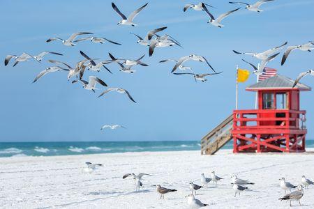 Séjour Est américain - Splendeurs de Floride & Extension Miami Beach 11J/09N - 2021
