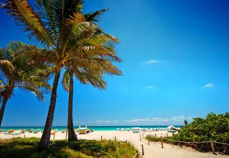 Séjour Est américain - Splendeurs de Floride & Croisière Key West & Mexique 11J/09N - 2021