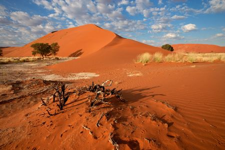 Splendeurs de Namibie & extension Fish River Canyon & Chutes Victoria 17J/14N - 2022