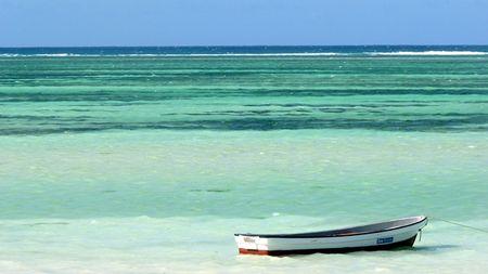Splendeurs de Tanzanie & extension Zanzibar - voyage  - sejour