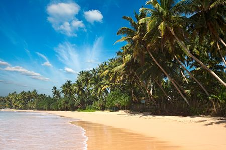 Splendeurs du Sri Lanka & Extension Sun Island 5* Maldives 13J/10N - 2019