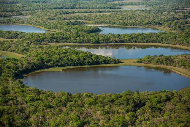 Pré-voyage Pantanal et Merveilles du Brésil 17J/14N - 2019 - voyage  - sejour