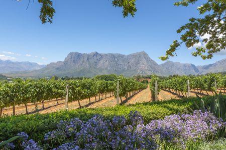 Circuit Merveilles de l'Afrique du Sud 3*