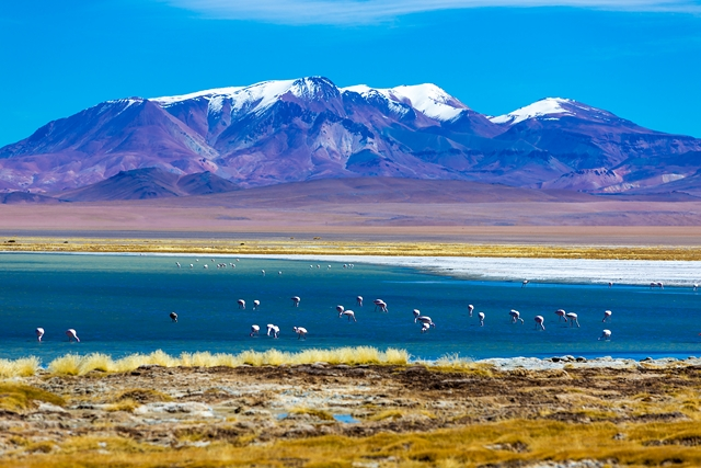 Splendeurs du Chili 12J/9N - 2019