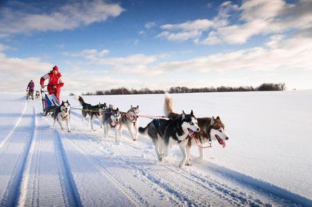 Offre Spéciale - Douceurs de l'hiver canadien - 2021/2022